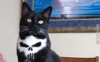 Možete me zvati Punisher
