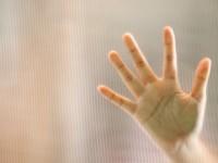 Mujo i gatanje iz dlana